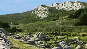 Caune-arago2